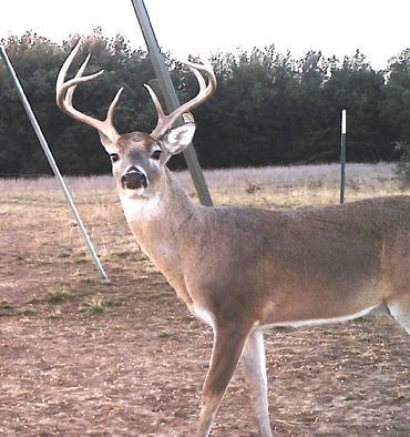 Ranch & Hunting Land Realty, LLC